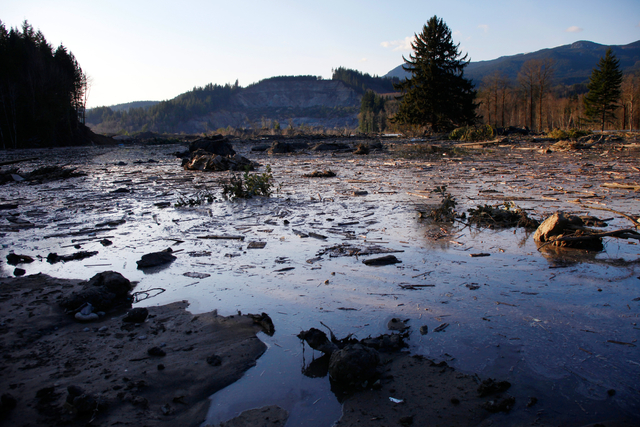 Water and mud back up on the east side of Saturday's fatal mudslide near Oso, Wash., Sunday. (AP Photo /The Herald, Genna Martin)
