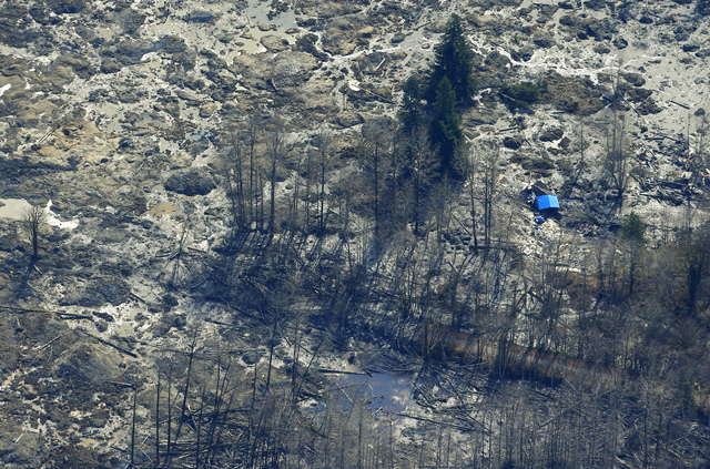 The blue-tarped roof of a house destroyed by the massive mudslide that killed at least eight people Saturday and left dozens missing is visible at right in this aerial photo, Monday, March 24, 201 ...