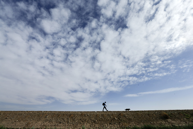 Francisco Munoz walks on barren soil with his dog in the Colorado River delta near Colonia Coahuila, Mexico,  Wednesday, March 26, 2014.  Colorado River water has begun pouring over a barren delta ...