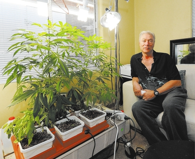 Dennis Dunn sits next to his legal medical marijuana plants at his home in Las Vegas, Wednesday, Dec. 11, 2013. (Jerry Henkel/Las Vegas Review-Journal)
