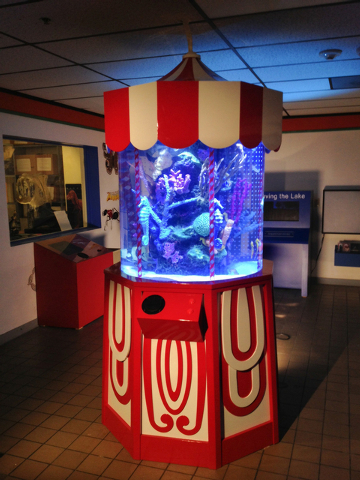 "The finished Carousel Tank built for the Las Vegas Natural History Museum on Animal Planet's ""Tanked."" (Courtesy: Animal Planet)"