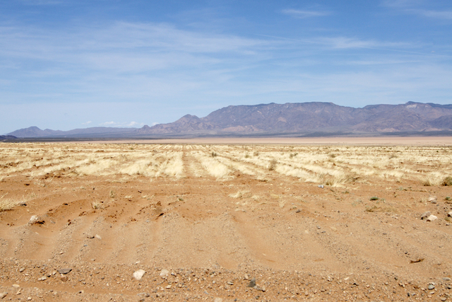 Jim Rhodes' farm is shown about 20 miles north of Kingman, Ariz. Friday, March 28, 2014. The builder has left his hammer in Las Vegas and taken up farming on portions of his holdings in northwest  ...