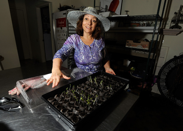 Master gardener Joann Reckling displays her seedlings that will be transplanted into her backyard garden, March 2. (David Becker/View)