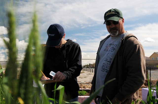 Rodney Pinckney, right, and his son Christian, 17, write down observation notes of the garden at the Clark County Center for Urban Food Production in Las Vegas Saturday, March 1, 2014. Master gard ...