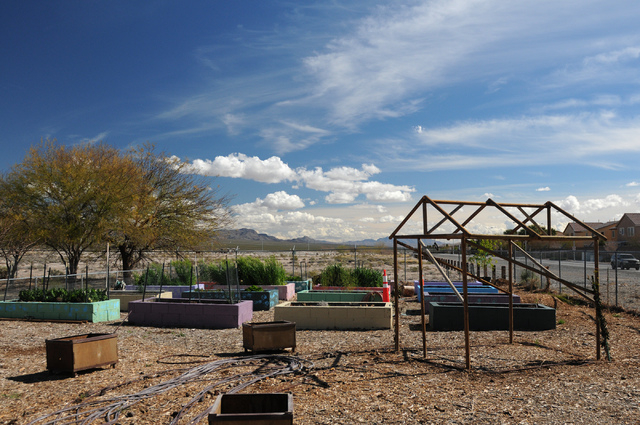The garden at the Clark County Center for Urban Food Production in Las Vegas is seen Saturday, March 1, 2014. Master gardener volunteers teach the Cooperative Extension's Junior Master Gardener pr ...