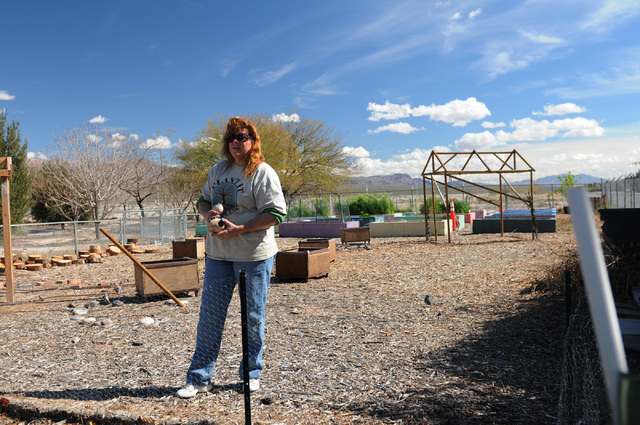 Master gardener Karyn Johnson gives a tour of the garden at the Clark County Center for Urban Food Production in Las Vegas Saturday, March 1, 2014. Johnson and other master gardener volunteers tea ...