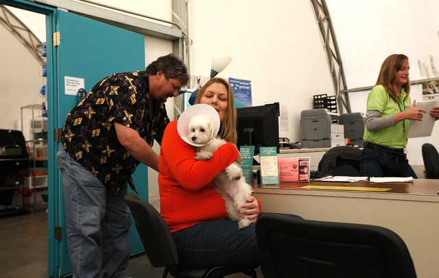 Billy Sottile, left, and Terri Sottile, center, adopt CJ, a Maltese puppy that was one of the puppies in the Prince and Princess pet store fire in January, at The Animal Foundation LIED Animal She ...