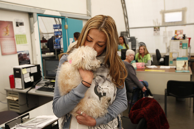 Trina Pascucci holds Aideen, a poodle mix that was rescued from the Prince and Princess pet store fire in January, shortly before adopting the animal at the Animal Foundation LIED Animal Shelter i ...