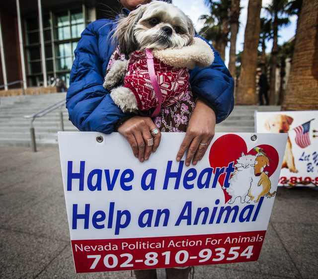 Elizabeth Garcia, left, holds her dog Zzyzx during an animal rights demonstration in front of Clark County Regional Justice Center Wednesday, Feb. 5, 2014. About 15 people  demonstrated before a h ...