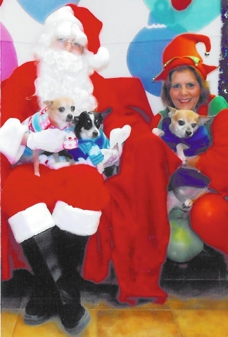 """Henderson resident Monique Smitherman shared this photo, saying, """"Merry Christmas, 2013. Red, Keno and Gafah all divulged their Christmas wishes to Santa Paws!"""""""