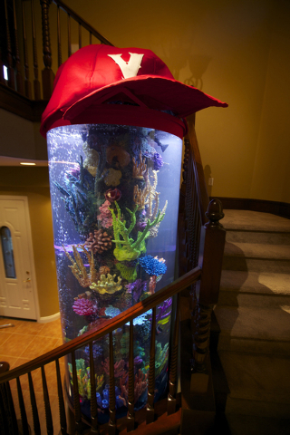 "The Hawaiian-themed tank built for Shane Victorino on Animal Planet's ""Tanked."" (Courtesy: Animal Planet)"