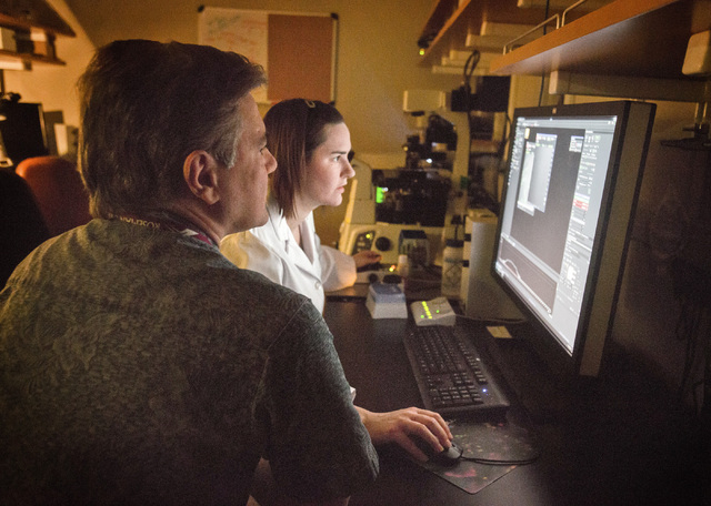 Fabio Anzanello, left, research technician, and Toni Green, Ph.D., in Roseman University of Health Sciences lab  at Summerlin campus,10530 Discovery Drive, on Friday, Jan. 31, 2014. They were usin ...