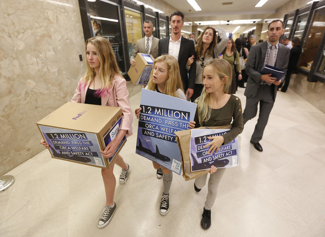 Ava Kotler, 12, left, her sister Kirra, 10, right, and Lizzie Gordon, 11, center, helped deliver petitions for a bill that bans holding killer whales for performance and entertainment purposes, Mo ...