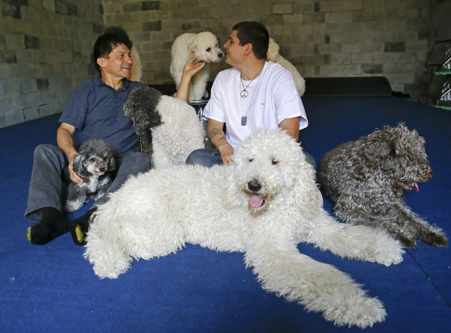 In this photo taken on Tuesday, April 22, 2014, Richard Olate, left, and son Nicholas, play with their performing dogs at a training facility in Sorrento, Fla. Since the father and son took their  ...