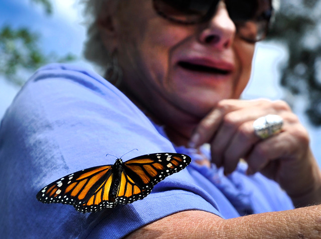 """Cookie Brinkmeyer cries as she sees a monarch butterfly land on her sleeve during annual the Nathan Adelson Hospice's """"Celebration of Life"""" butterfly release at UNLV on Sunday, April 27, ..."""