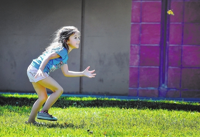 """Jaden Hamamura, 5, chases a fluttering monarch butterfly during the Nathan Adelson Hospice's """"Celebration of Life"""" butterfly release at UNLV on Sunday, April 27, 2014. The annual event,  ..."""