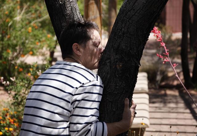 Beth Stephens kisses a tree while leading the Ecosex walking tour through UNLV in Las Vegas Wednesday, April 23, 2014. (John Locher/Las Vegas Review-Journal)