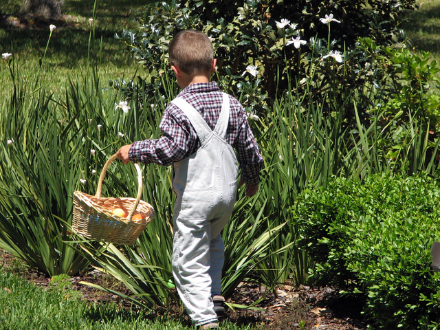 """special to view Enterprise Library, 25 E. Shelbourne Ave., plans to host its Spring Egg Hunt for children up to 11 years old at 4 p.m. April 17. Children will have an """"egg-citing time as they re ..."""