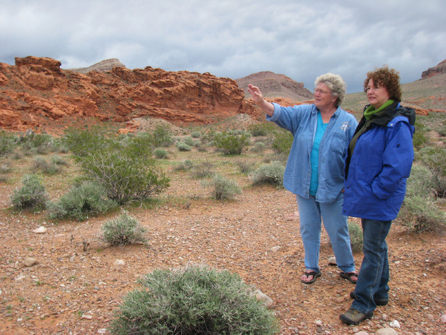 Terri Robertson showed some of her favorite spots in Gold Butte to Boulder City resident Lynn Goya  April 10, 2010.  (F. Andrew Taylor/Review-Journal)
