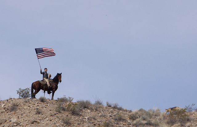 Arden Bundy, son of rancher Cliven Bundy, flies the American flag on a hill overlooking the protest site near Bunkerville on April 12, 2014. Moments before, the BLM agreed to cease the round up of ...