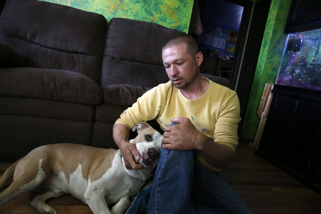 Wayne Winkler, who suffered burns to 12 percent of his body when butane fumes ignited while he was making hash oil at home, pets his dog Bailey, in his living room, in Denver, May 1, 2014. Winkler ...