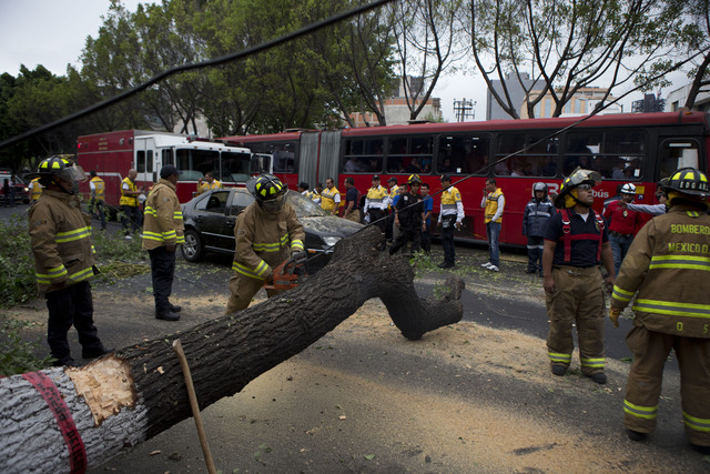 Firefighters cut apart a fallen tree that took down power lines and landed on a car, after an earthquake shook the city and sent people scurrying from office buildings, in Mexico City, Thursday, M ...