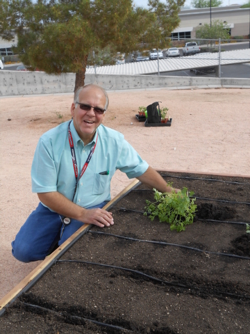 Gary Manning, shown April 22 at the newly unveiled garden at Coronado High School, wants to use the planting experience to teach his students about healthy eating and learning skills like horticul ...