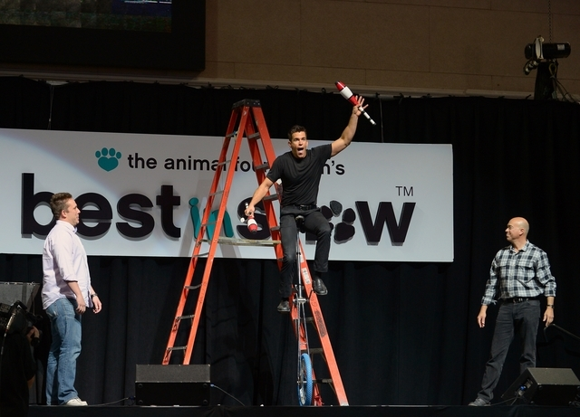 Jeff Civillico performs for free for the cause. (Courtesy photo by Bryan Steffy/Getty-WireImage)