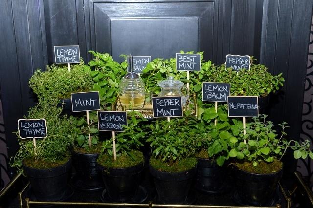 Fresh Herb Garden at Joel Robuchon. (Courtesy photo by Bryan Steffy)