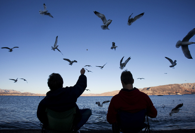 """John La Baum, left, feeds the birds with Kevin Waterman at the Lake Mead National Recreation Area on Sunday, Dec. 13, 2009. The two make regular trips to the lake in the evening. """"It's just peacef ..."""