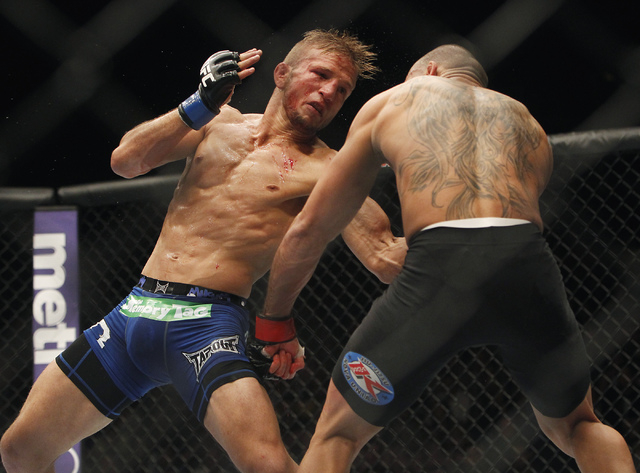 TJ Dillashaw, left, hits Renan Barao during UFC 173 at the MGM Grand Garden Arena in Las Vegas on Saturday, May 24, 2014. (Jason Bean/Las Vegas Review-Journal)