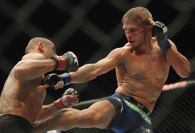 TJ Dillashaw, right, kicks Renan Barao during UFC 173 at the MGM Grand Garden Arena in Las Vegas on Saturday, May 24, 2014. (Jason Bean/Las Vegas Review-Journal)