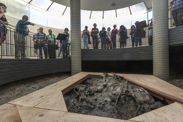 Page Museum Chief Curator John Harris, second from left, leads members of the media in a tour of the 1952 Observation Pit at the Hancock Park Page Museum in Los Angeles, Thursday, June 19, 2014. T ...