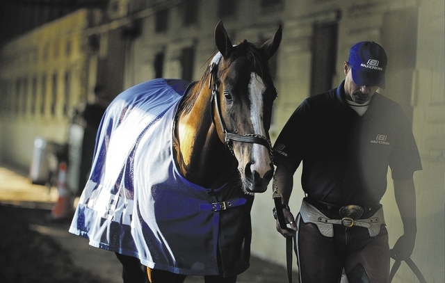 Exercise rider Willie Delgado hot walks California Chrome after a workout at Belmont Park, Tuesday, June 3, 2014, in Elmont, N.Y.  The Kentucky Derby and Preakness Stakes winner will attempt to be ...
