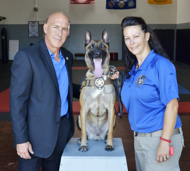 Garzon, a Belgian Malinois, center, is shown at Elite Tactical Security Solutions with Richard Diaz, president and CEO, left, and his wife and company owner Maribah Diaz at the firm's offices and  ...