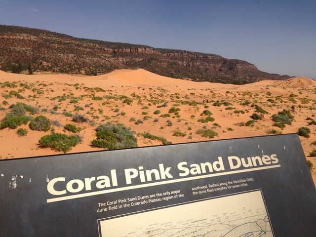 One night the bike tourists camped out at the Coral Pink Sand Dunes state park in Southern Utah. (ALAN SNEL/LAS VEGAS REVIEW-JOURNAL)