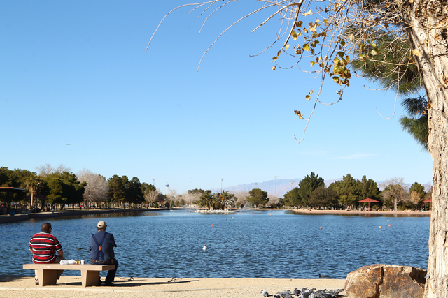 Brothers Cordell, right, and John Eberhardt fish in Sunset Park's lake in January. June 14 is Nevada Free Fishing Day. Anglers may fish in any public fishing water in the state, including Sunset ...