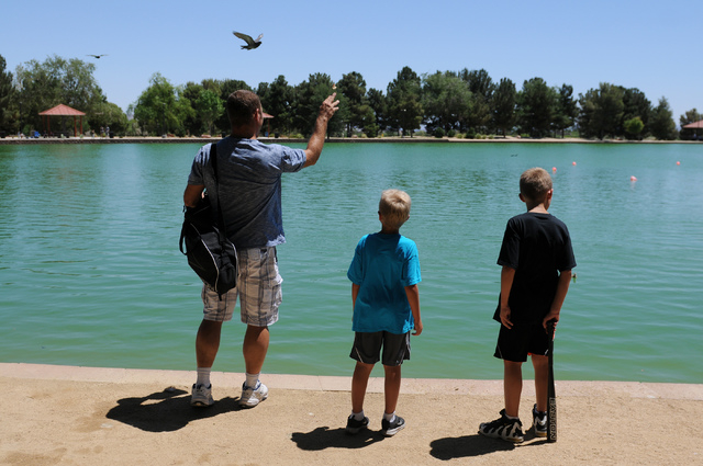 Christopher Beaumont, from left, feeds the birds with his two sons Bronson, 7, and Tre, 9, at Sunset Park in Las Vegas Saturday, May 31, 2014. Beaumont, a single father, is an organizer for Single ...