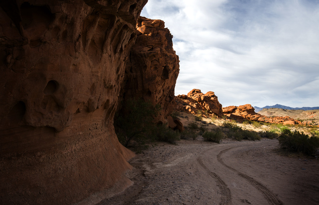 Tire tracks are seen Thursday, May 22, 2014 in the Gold Butte area. The Gold Butte Region, administered by the BLM and the U.S. National Park Service, is about 2-1/2 hours east of Las Vegas. The a ...