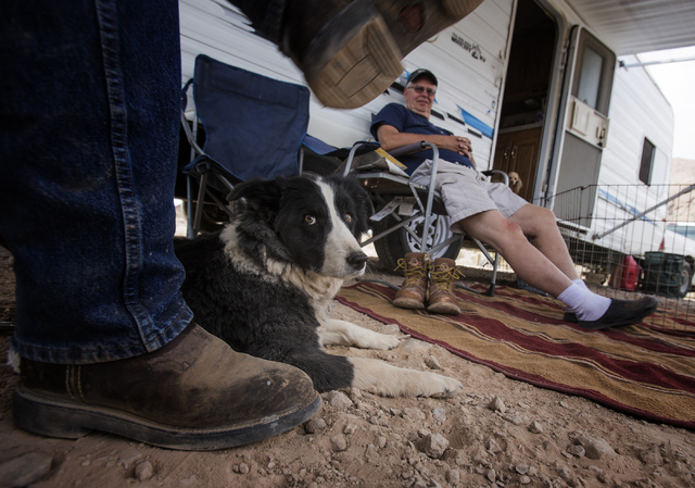 Stormy the dog lies beside Ted Brown, left, and Earl Peterson on Thursday, May 22, 2014, in a camping area of the Gold Butte Region, about 2 1/2 hours east of Las Vegas. The area is administered b ...