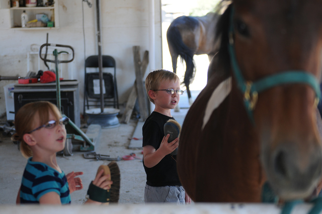 Acacia Galey, 6, left, and her twin Kyden, brush a horse during their visit to a friend's private ranch in Las Vegas Tuesday, June 24, 2014. Robin Warren, 13, with the help of her caregiver Denise ...