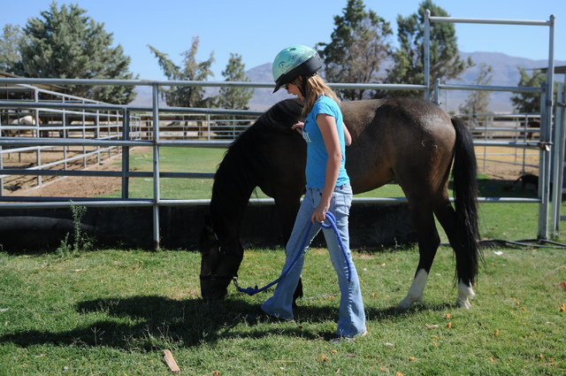 Robin Warren, 13, watches her rescued horse, Rocky, a 2-year-old grulla horse, as he eats grass at a friend's private ranch in Las Vegas Tuesday, June 24, 2014. Warren, with the help of her caregi ...