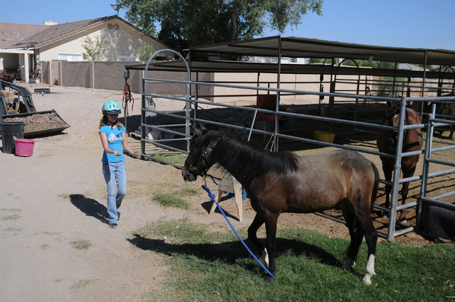 Robin Warren, 13, interacts with her rescued horse, Rocky, a 2-year-old grulla horse at a friend's private ranch in Las Vegas Tuesday, June 24, 2014. Warren, with the help of her caregiver Denise  ...