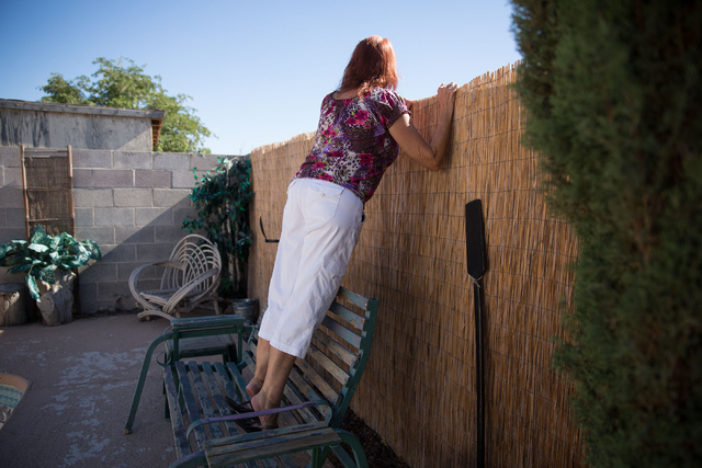 Cindy Sherwood peers over her back wall to look at the progression of a pipeline for wastewater along Sloan Channel in North Las Vegas on Friday, June 27, 2014.(Samantha Clemens-Kerbs/Las Vegas Re ...