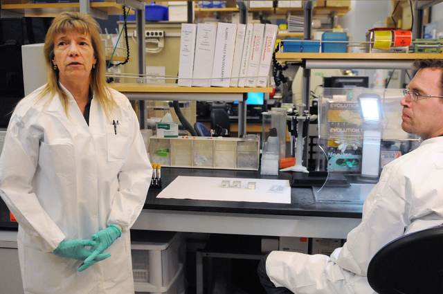 Holly Hansen, left, senior clinical laboratory scientist at Southern Nevada Public Health Laboratory in Las Vegas, and medical technologist Dan Brown, talk about the testing process of sexually tr ...