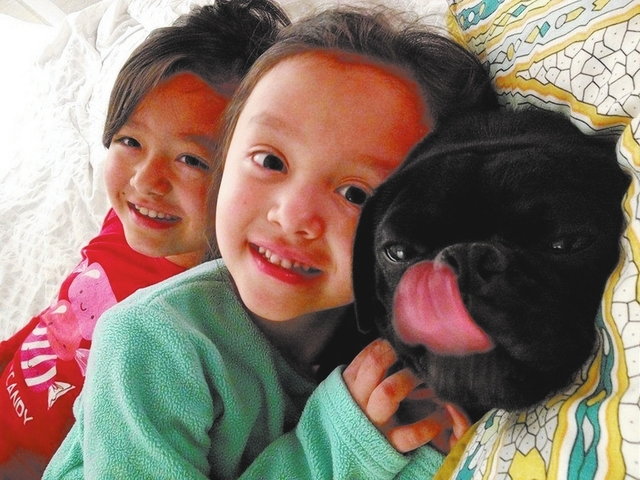"Chris Haraway  of Las Vegas said, ""This is a picture of Inky the pug, an early Mother's Day present that his two sisters, Hana and Sarah Haraway (pictured), have stolen all the attention from."""