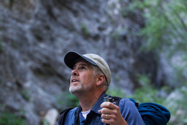 Fred Bell surveys the area before setting up his recording equipment in Fletcher Canyon at Mount Charleston on Thursday, June 19, 2014. Bell goes to various areas to record the sounds of nature, u ...