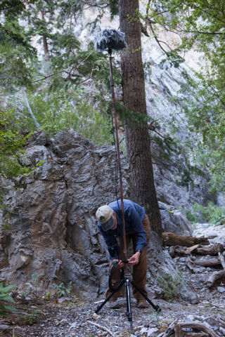 Fred Bell sets up his sound recording equipment in Fletcher Canyon at Mount Charleston on Thursday, June 19, 2014. Bell goes to various areas to record the sounds of nature, usually for hours at a ...