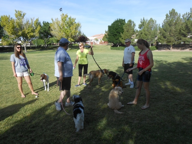 About 12 members of an unofficial dog walkers group gathered May 17 at The Crossing Park, 1111 Crestdale Lane. They meet every morning to walk their dogs and have taken on the task of picking up o ...