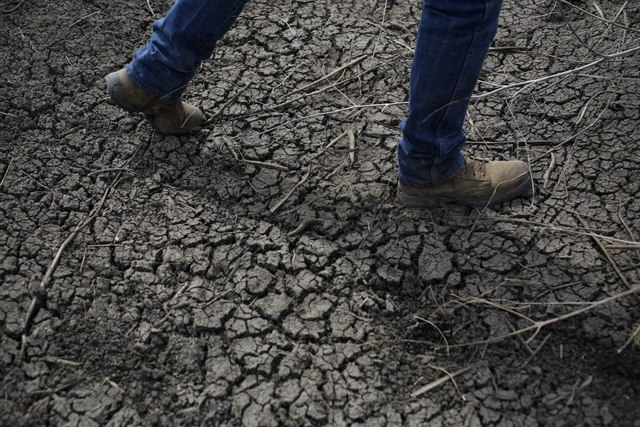 Fourth-generation rice farmer Josh Sheppard walks across the dried-up ditch at his rice farm in Richvale, Calif., on May 1. Throughout California's dry interior, those with water to spare are cash ...